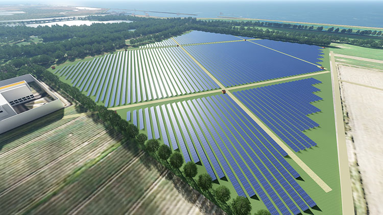 3D render bird's eye large field full of solar panels and surrounding trees and lake.